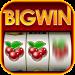 Big Win Slots™ – Slot Machines 1.19.2 APK