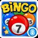 Bingo™ 3.3.0g APK