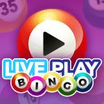 Live Play Bingo – Bingo with real live video hosts